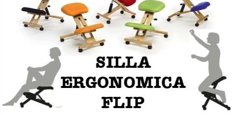 Silla ergonomica FLIP