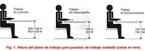 3 ideas para hacer tu oficina ergon mica el blog de sillas for Recomendaciones ergonomicas para trabajo en oficina