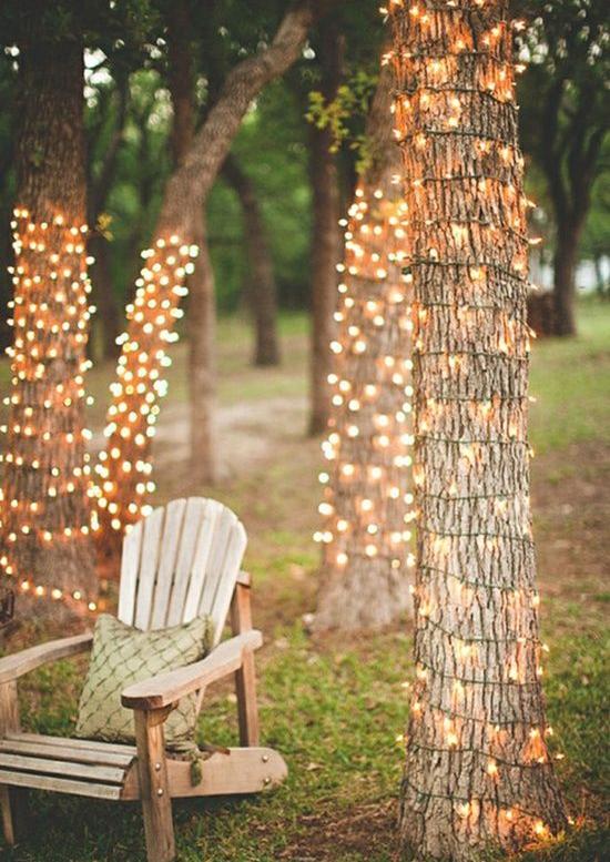 luces de navidad alrededor de arboles sm