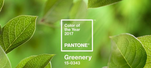 EL COLOR TENDENCIA PARA EL 2017: VERDE GREENERY