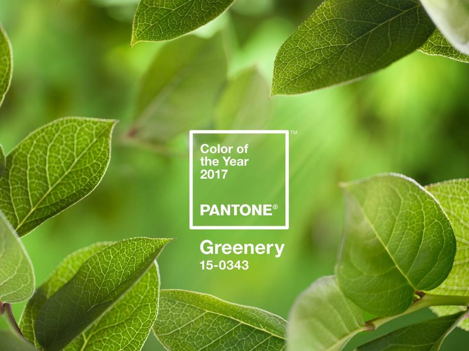 PANTONE-Color-of-the-Year-2017-Greenery-